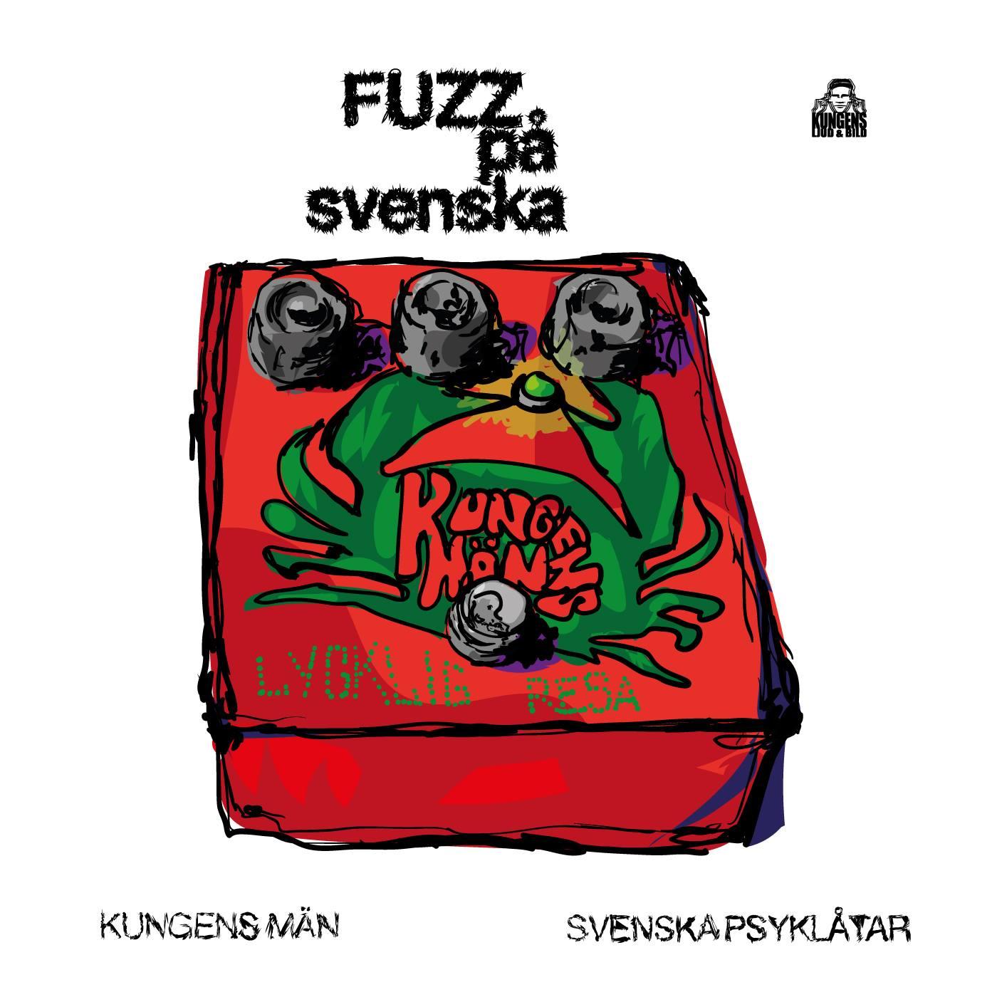 fuzz-pa-svenska-digital